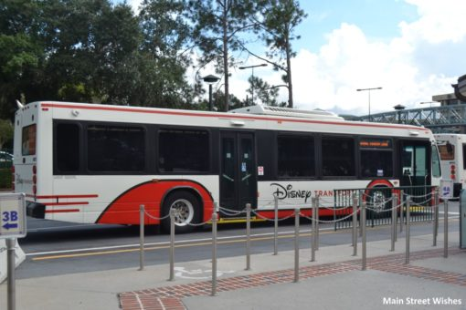 Disney Springs Buses